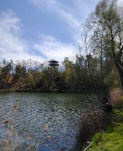 Gesteinsgarten Gommern